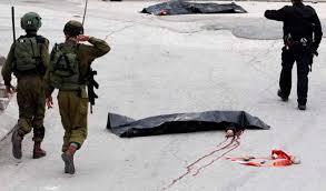 Halevy citó en particular la conducta de los soldados de las FDI cuando se refiere a la difusión del miedo y el extremismo judío, citando el incidente de marzo con un oficial en Hebrón, que mataron a un atacante palestino moderado.